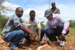 from left to right- Rwanda Refugee Community leader Dr Jean Marie Vianney Nderereremungu, Chieftainess Nkomesha representative headman Jashon Tatile and Rwanda Refugee Community leader Egide Kasuba launching the tree plantation